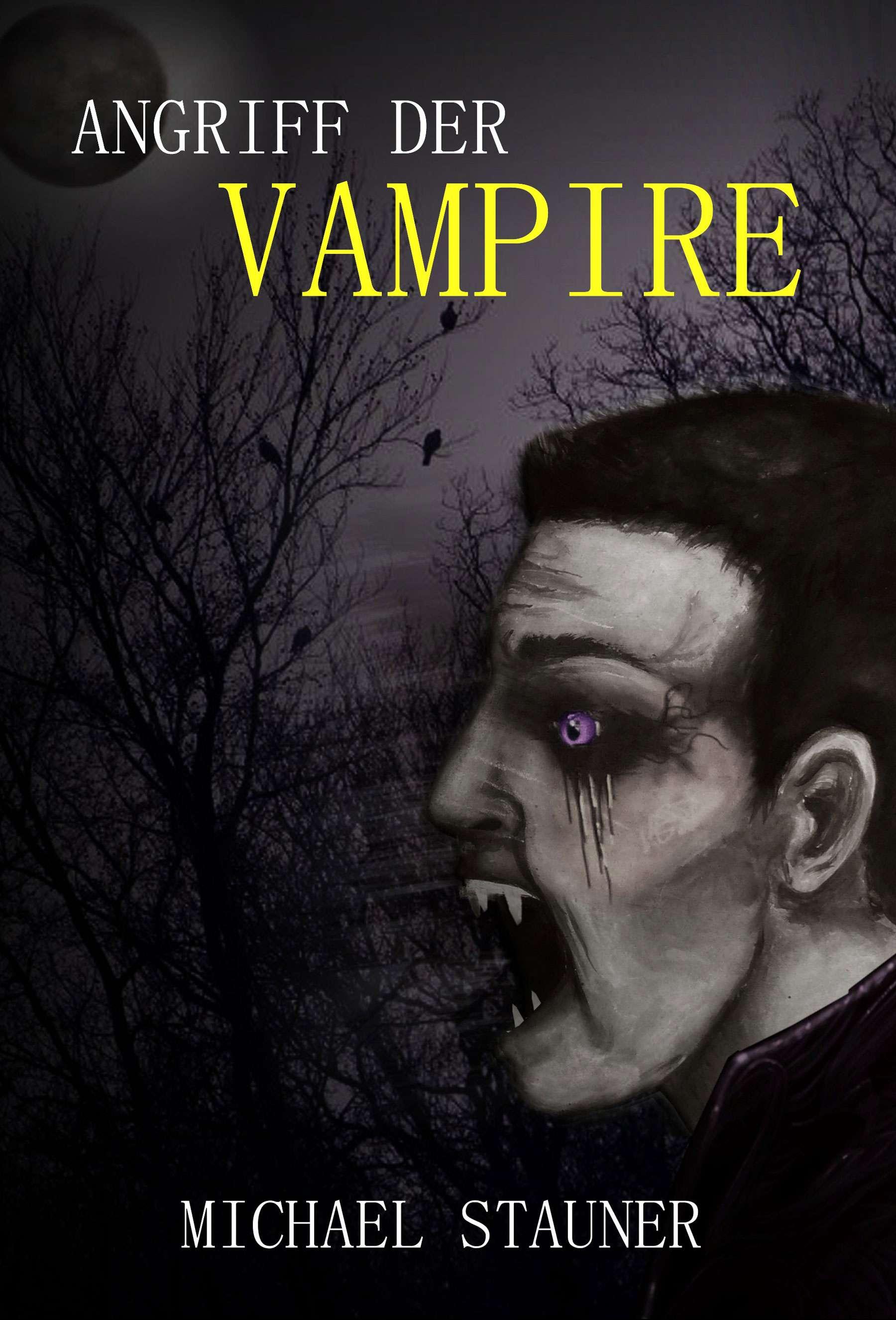 Michael Stauner Angriff der Vampire Book Cover